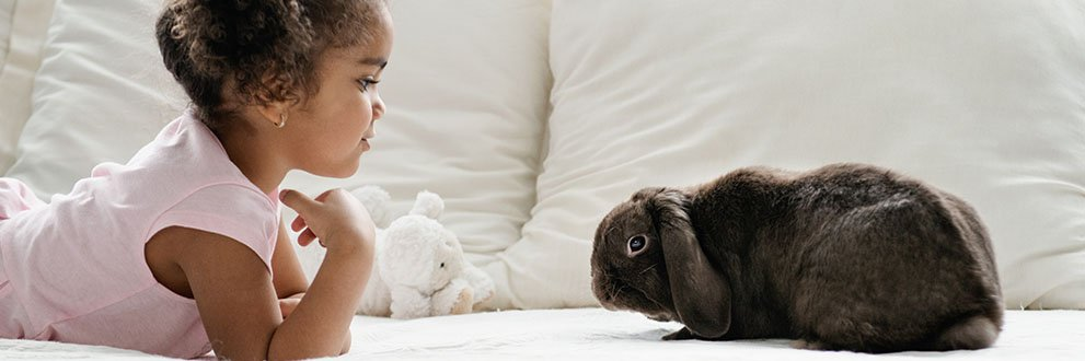 Young girl and her pet bunny