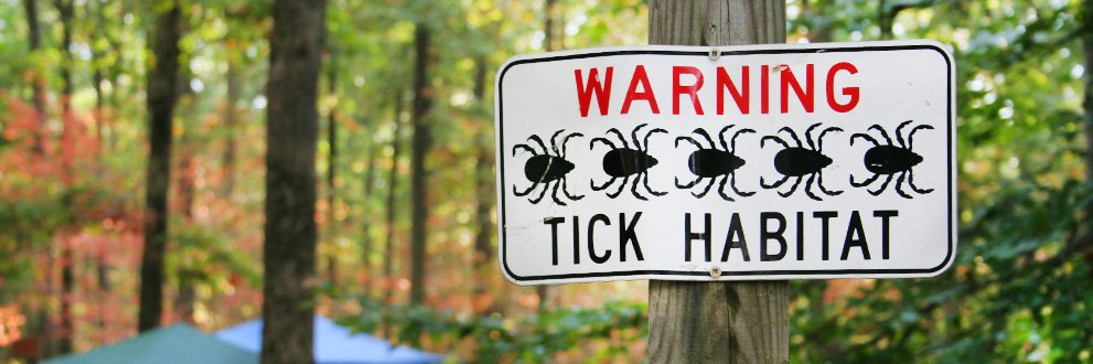 5 ways to prevent tick bites and Lyme disease