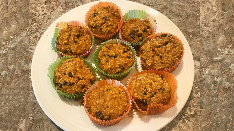 pumpkin chocolate chip muffins recipe